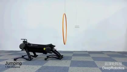 Video: Jueyin, el perro robot chino que simula a los reales