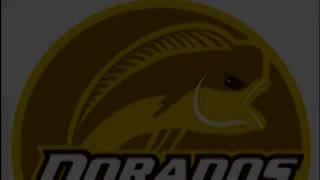 La canción dedicada a Maradona en Dorados