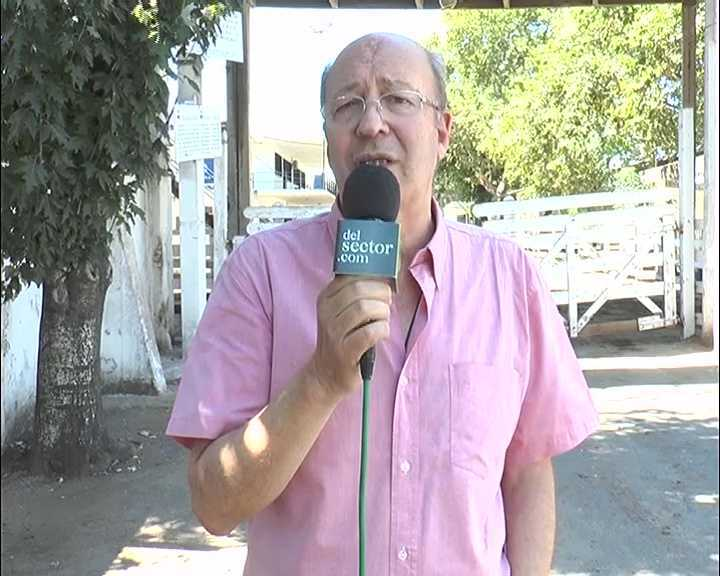 Informe Liniers 7/2