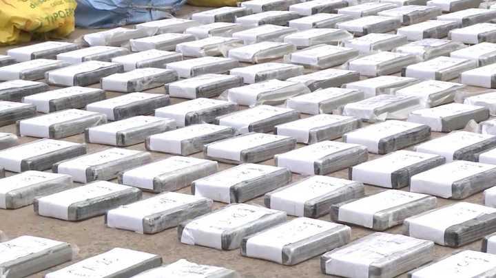 """Operación """"Bandera Blanca"""": más de 370 kilos de cocaína secuestrados en un campo de Las Flores"""
