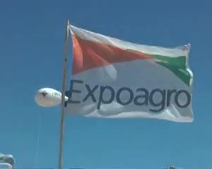 En Expoagro, la raza Angus exhibirá todo su potencial.