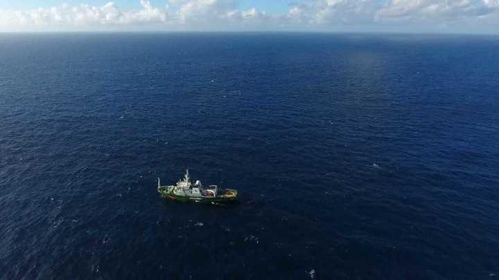 Hallan arrecifes amazónicos en áreas petroleras de Total