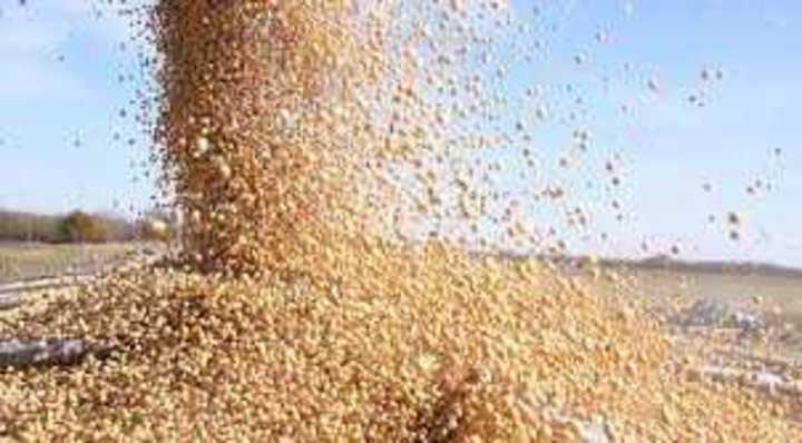 Más volumen y mejores precios para cereales