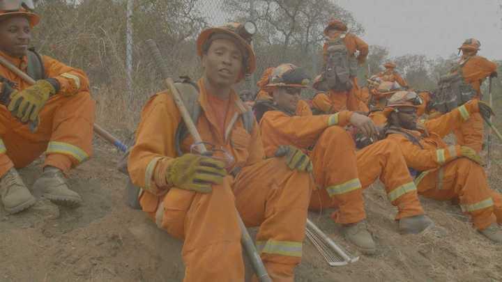 California: más de 2 mil presos trabajan para combatir los incendios