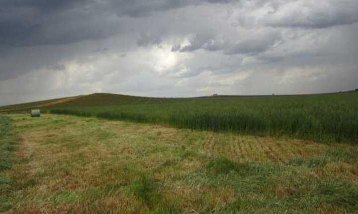 Clima: vienen tres días de probabilidad de lluvias en la zona pampeana