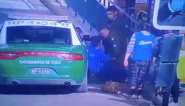 Carabinero mató a un perro que defendía a un vendedor ambulante
