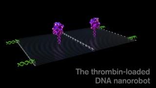 Programan nanorobots para buscar y destruir tumores