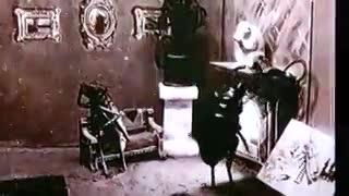 Cucarachas en el cine