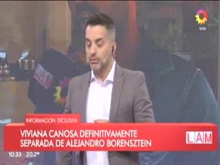 Viviana Canosa confirmó que se separó de Alejandro Borenstein