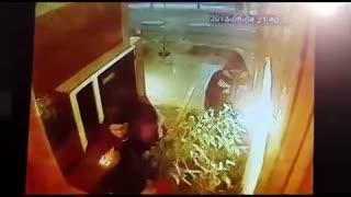 Doble crimen en Belgrano: paso a paso, así fue la llegada la abogada y el sicario al edificio