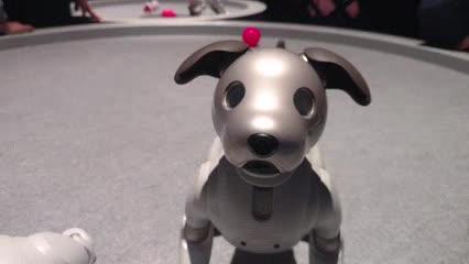 Aibo, el perro robot de Sony presentado en CES 2019