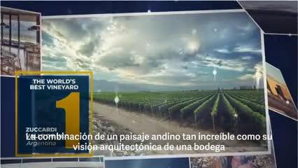 Video: El mejor viñedo del mundo 2020 es el de la bodega argentina Zuccardi