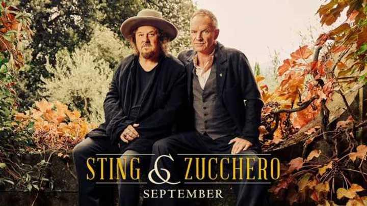 Video: Sting y Zucchero lanzaron un dueto