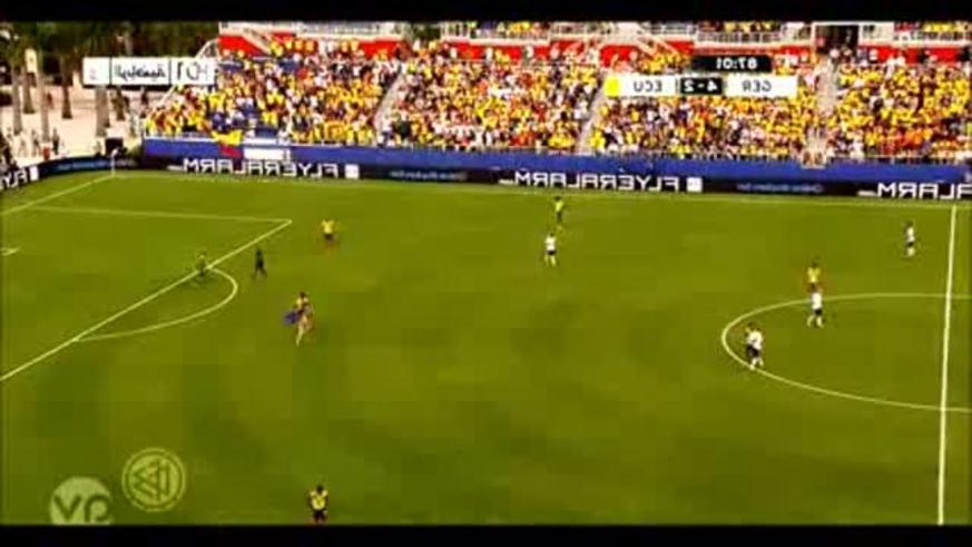 Un fan se metió así en Ecuador 2 - Alemania 4