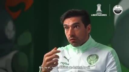 "Ferreira, DT de Palmeiras: ""River llevó champagne para festejar el pase a la final"""