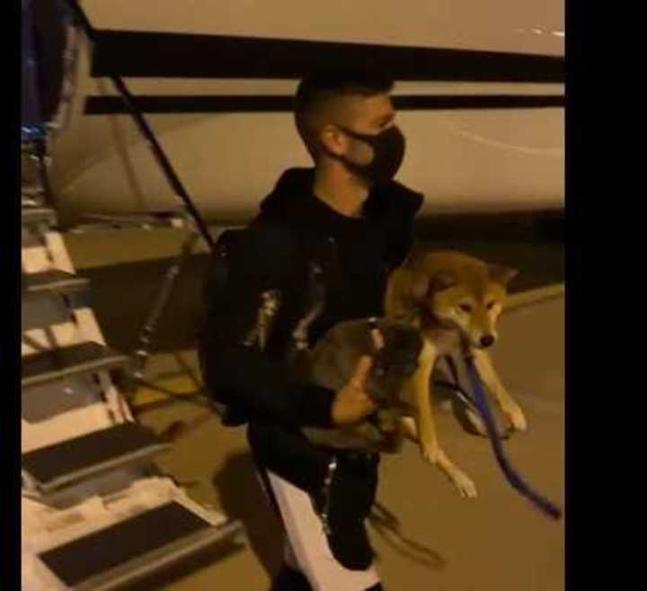Vietto llegó con tres perros