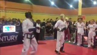 Parte de lo que fue el US Open Martials Arts