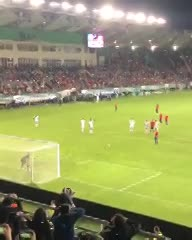 El festejo del gol y el porrazo del nene