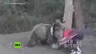 Khabib peleaba de chicos contra osos