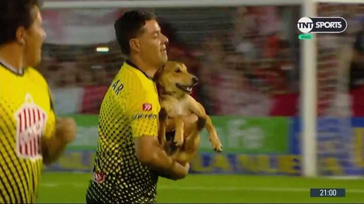 Un perro demoró el inicio del partido