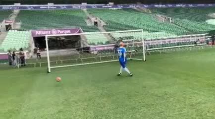 El refuerzo inglés de Palmeiras
