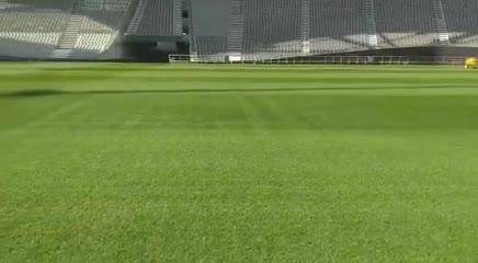 El césped del Estadio Ciudad de La Plata, listo para el clásico
