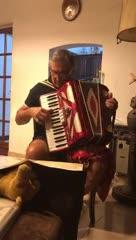 Pepe Romero toca el acordeón para Olé
