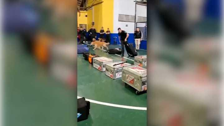 Requisa de la policía a la indumentaria de River en la Bombonera